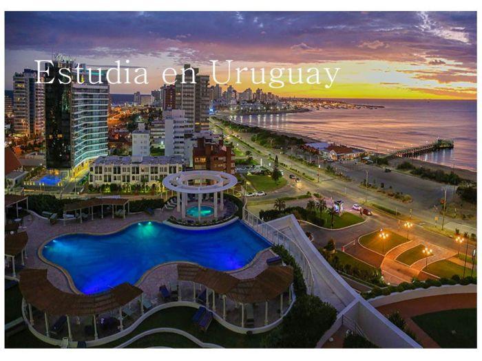 Uruguay: Beca Pregrado en Ingeniería  Programa Roberto Rocca