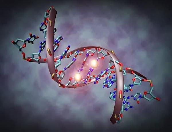 Becas para Investigaciones de Pregrado y Postgrado en Ciencias-Axol Bioscience