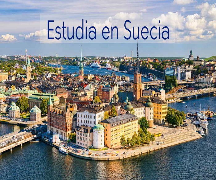 Suecia: Beca  Postdoctorado  en Economía Universidad de Umea