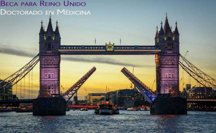 Reino Unido: Beca Doctorado en Médicina Brunel University