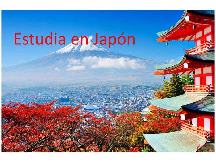 Japón: Beca Pregrado y Postgrado en Diversas Áreas  Fundación Internacional   Fukuoka