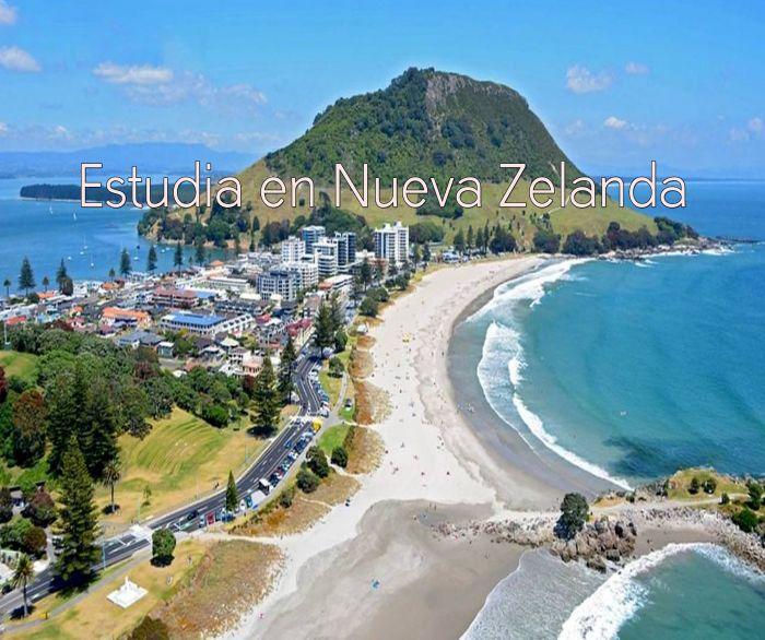 Nueva Zelanda: Beca Pregrado y Maestría en Diversas Áreas  Universidad  Auckland