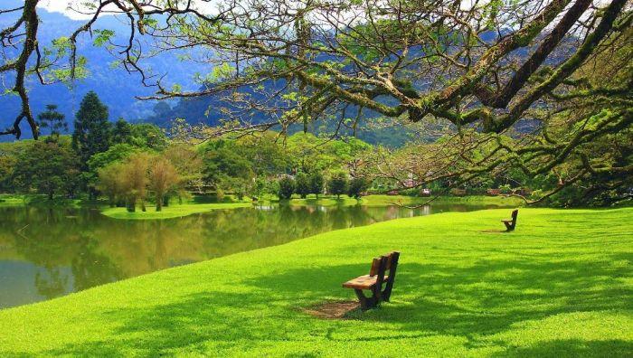 Malasia: Beca Pregrado y Maestría en Diversas Áreas Universidad  UCSI