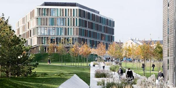 Dinamarca: Becas para Doctorado en Economía y Negocios Copenhagen Business School