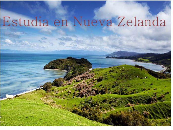 Nueva Zelanda: Beca Pregrado en Diversas Áreas  Universidad de Canterbury