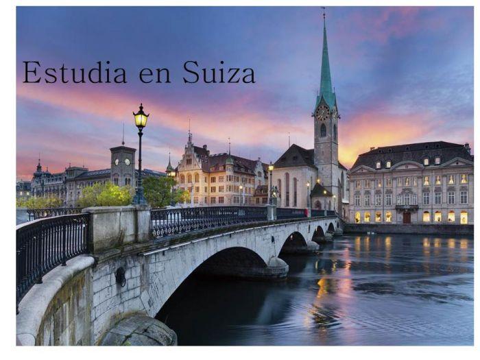 Suiza: Beca Doctorado en Musicología  Fundación Paul Sacher