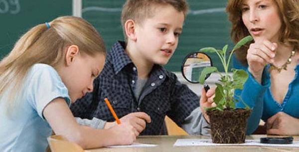 Online: Becas para Postgrado en Pedagogía OEA/CREFAL