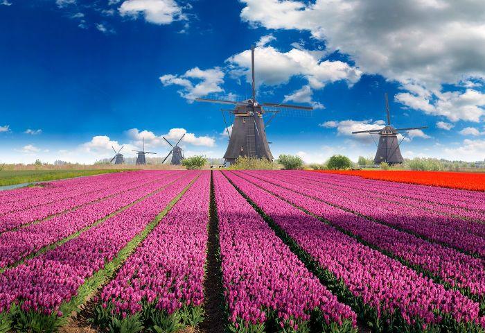Holanda: Beca Maestría en  Diversas Áreas Universidad de Utrecht