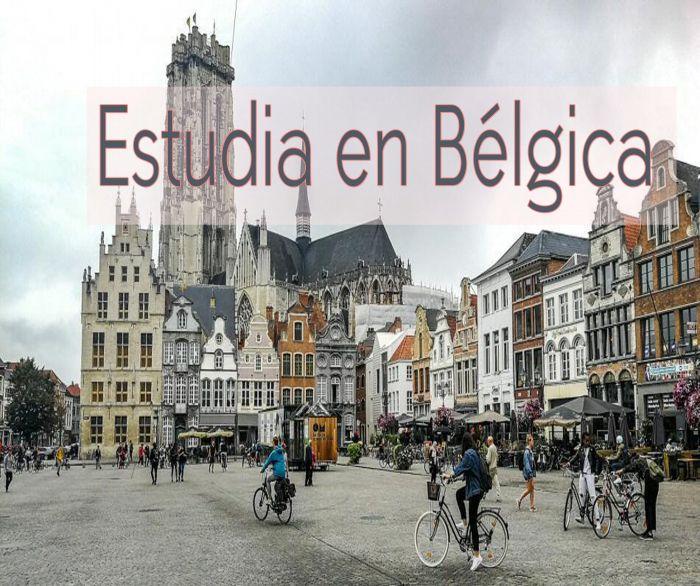 Bélgica: Beca Curso en Regulación de Telecomunicaciones Cullen International OEA