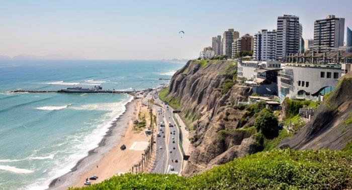 Online: Beca Certificación en PMA Sénior Fondo Verde OEA