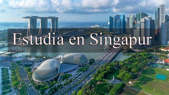 Singapur: Beca Pregrado Sistemas de Información Singapore Management University
