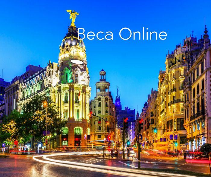 En línea: Beca Maestría en  Ingeniería Civil  OEA / STRUCTURALIA