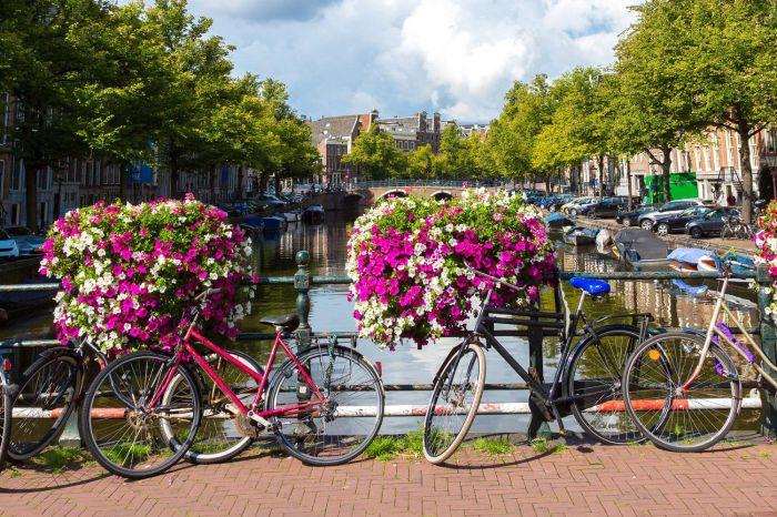 Holanda: Beca Maestría en Artes  Universidad de Radboud