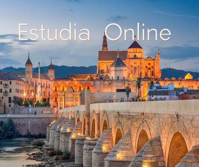 Online: Beca Maestría en Edificaciones OEA STRUCTURALIA