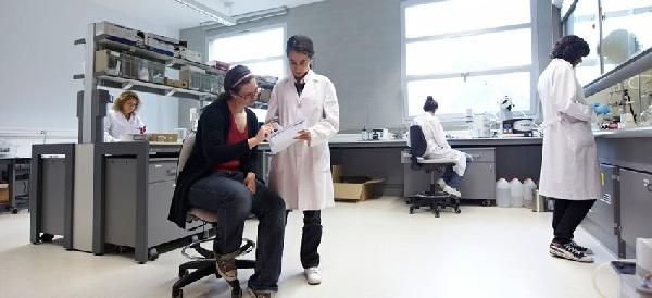 España: Becas para investigación postdoctorado Centro de Física de Materiales CFM