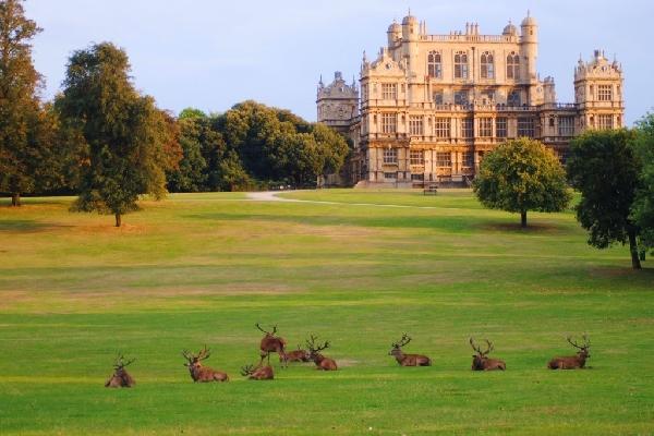 Reino Unido: Becas para Maestría en Varios Temas University of Nottingham